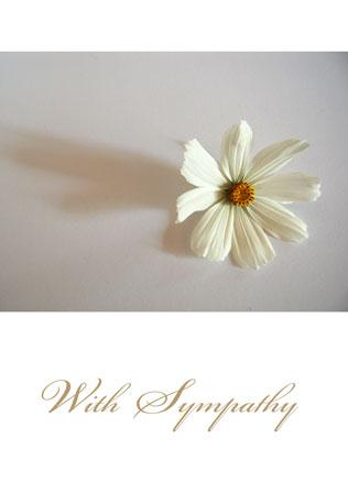 With-sympathy-WS01