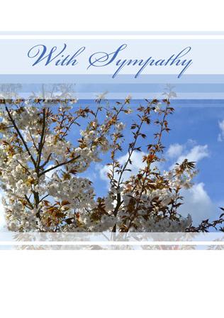 With-Sympathy-WS09