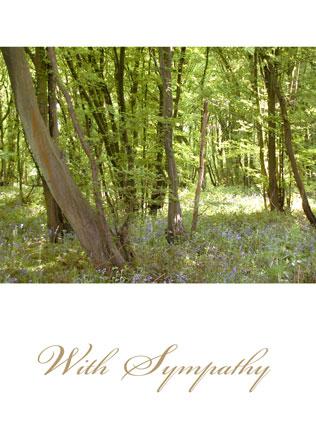With-sympathy-WS07