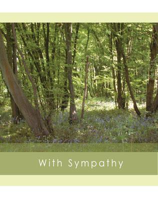 With-sympathy-WS10