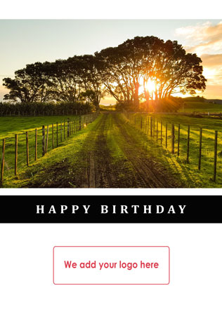 birthday-hb37