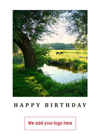 birthday-hb41