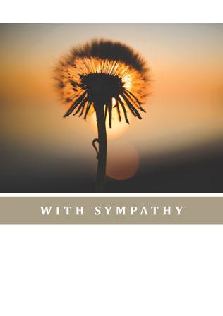 With-sympathy-WS17