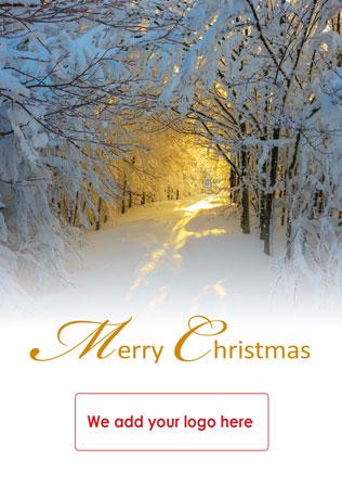 Christmas-card-X78