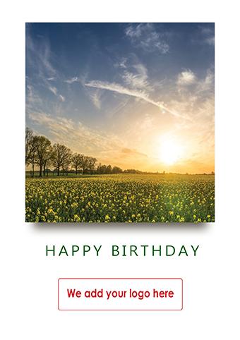 Birthday Hb57 Corporate Greetings Uk